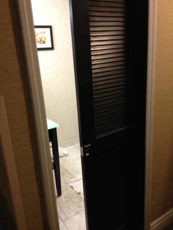 Ramada Plaza Holtsville Long Island: No privacy with this door to the only bathroom