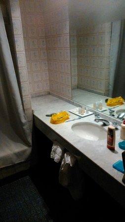 Hotel Cristoforo Colombo: Baño más o menos