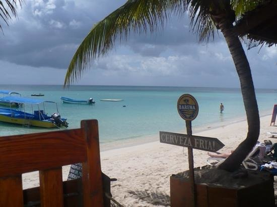 Thirsty Turtle Bar and Grill: Thirsty Turtle- Lunch with a view