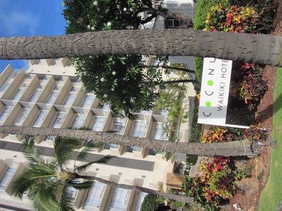 Coconut Waikiki Hotel: 外観
