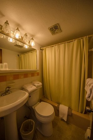 Compass Family Resort Motel: Type A and B Bathroom! New Sink, Toilet, Lights, and Floor!