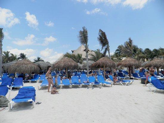 Viva Wyndham Maya : Camastros hotel