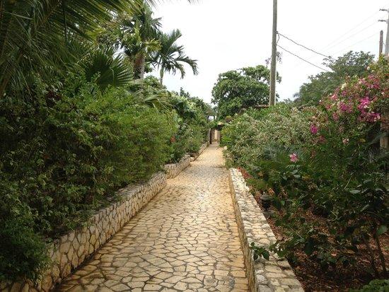 Rockhouse Hotel : Sidewalk to Spa Cabana