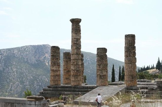 Ruines de Delphes : Columns