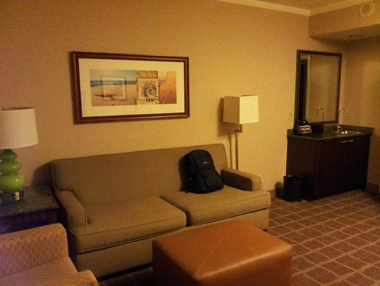 Embassy Suites by Hilton San Diego - La Jolla: living room