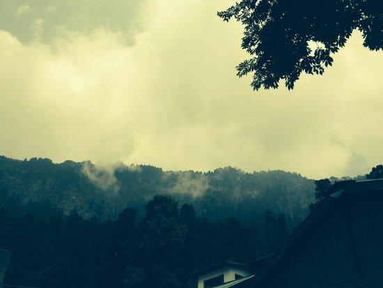 Shervani Hilltop: Nature