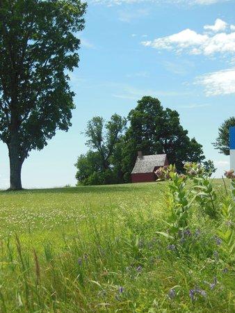 Saratoga National Historical Park: Freeman Farm