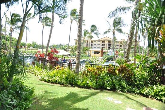 Koloa Landing Resort: Garden