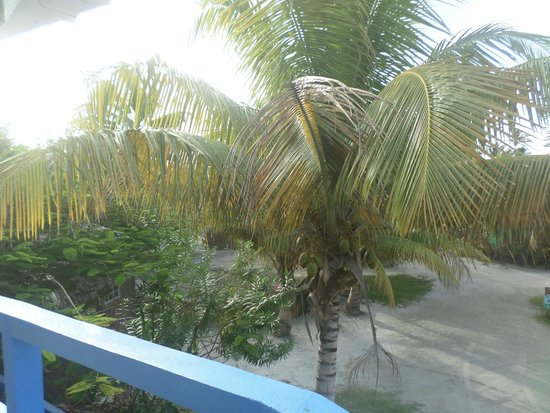 White Sands Cove Resort : View from our room.