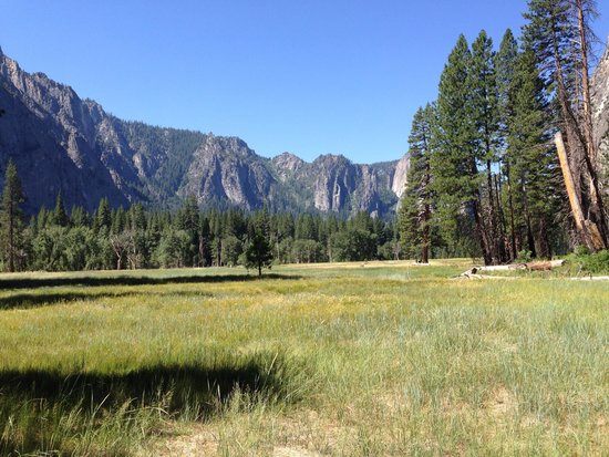 Yosemite Valley Lodge: Another great view