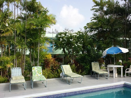 The Palm Garden Hotel: piscina
