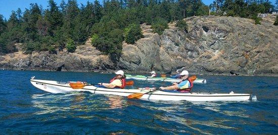 San Juan Kayak Expeditions - Day Tours: Great Kayaking!