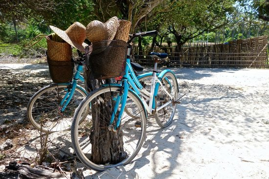 The Lombok Lodge : Renting bicycles on Gili Trawangan