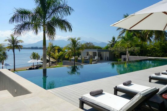The Lombok Lodge : Poolside