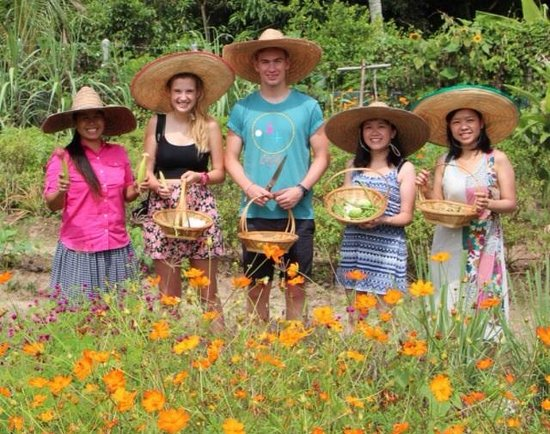 Thai Secret Cooking School : Picking our ingredients from the organic garden