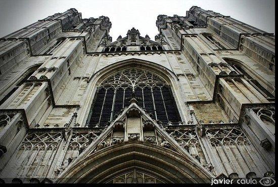 Cathédrale Saints-Michel-et-Gudule de Bruxelles : Vista 1