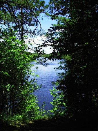Minnesota: Chippewa Lookout