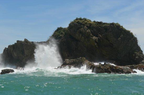 Playa Manuel Antonio: Cost south of the beach