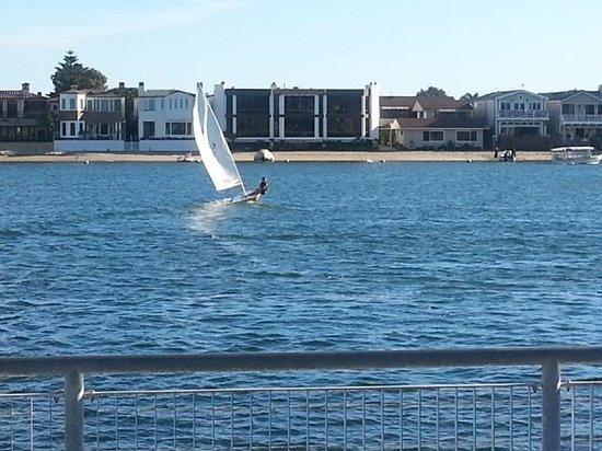 Balboa Bay Resort: View