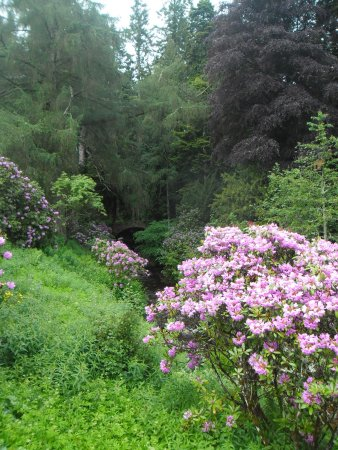 Blair Castle and Hercules Gardens: SNIPPET OF THE GARDENS