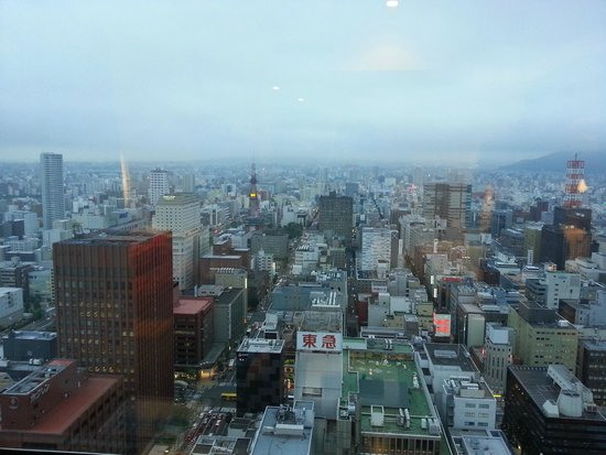 JR Tower Hotel Nikko Sapporo: View from the room