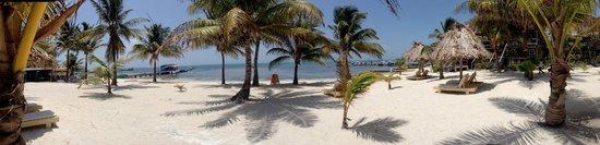 Exotic Caye Beach Resort: BEACH FRONT GOODNESS