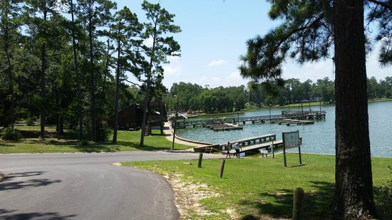 Livingston (TX) United States  city photos gallery : ... ramp Picture of Lake Livingston State Park, Livingston TripAdvisor