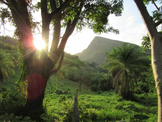 Hotel Borinquen Mountain Resort : On the last part of the drive into the resort
