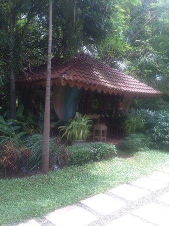 Tangerine Resort: garden