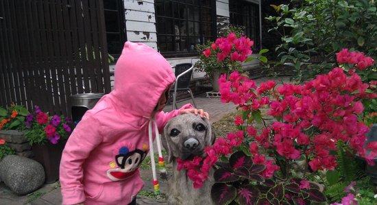 Tainan Park: 狗狗