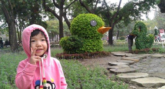 Tainan Park: 小鴨