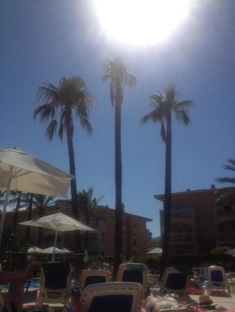 Aparthotel Playa Mar & Spa: Blazing sunshine and lazy days