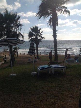 Venus Beach Hotel: The sea best part of the hotel by far