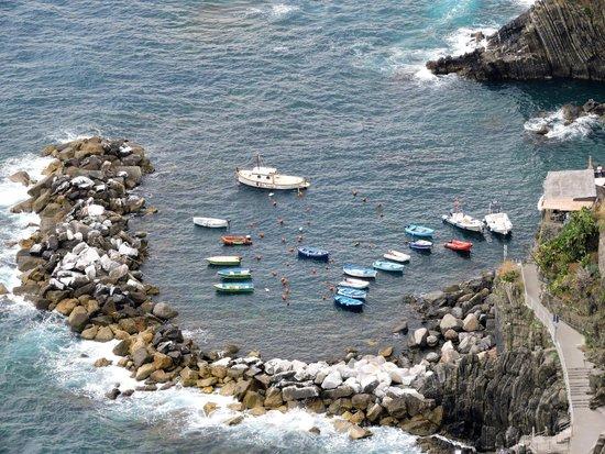 CTTours - Cinque Terre Private Tours and Shore Excursions: manorola