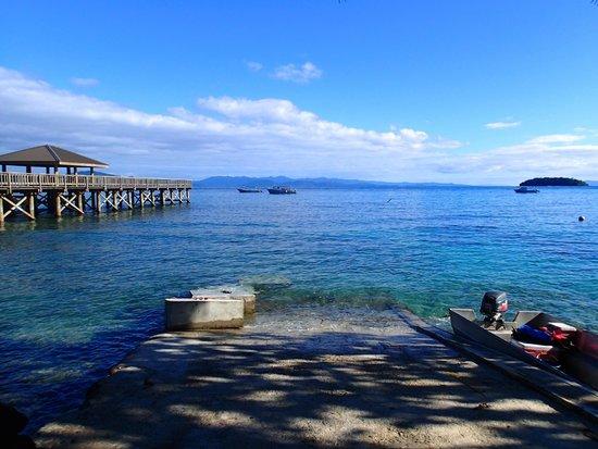 Garden Island Resort: Pier