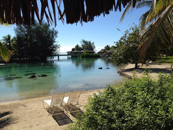 InterContinental Moorea Resort & Spa: The view from our bungalow