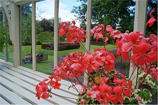 Malleny Garden: Gardeners world:)