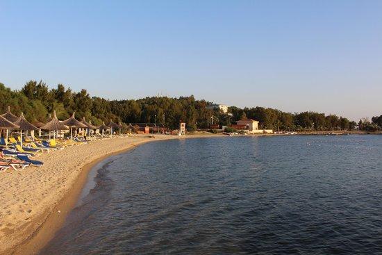 Neilson Phokaia Beachclub: Beach