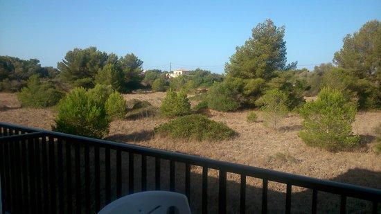 Figuera Park Hotel: vistas desde el balcón