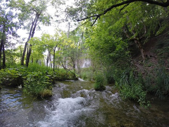 Plitvice Lakes National Park : Just one of the many beautiful waterfalls