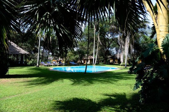 Arusha Safari Lodge: Green and pool