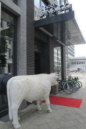 Hotel Indigo Berlin – Centre Alexanderplatz: Entrance
