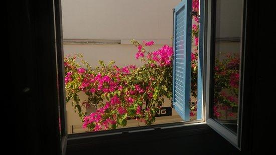 Santorini Facile Fira Rooms: Fiori Viola che si vedono fuori dalla finestra della camera