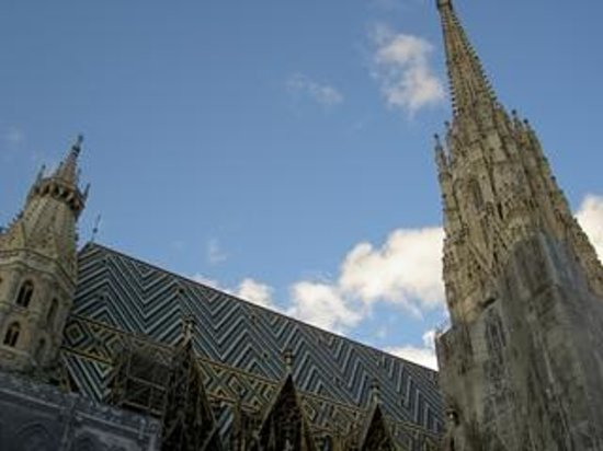 Cathédrale Saint-Étienne (Stephansdom) : 写真に写りきらないほどの大きさ