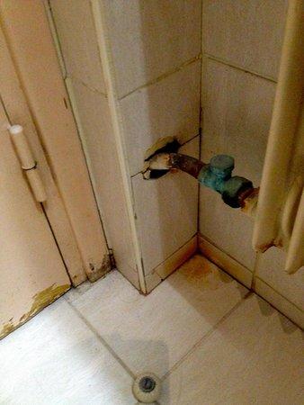 Hotel de Sevigne : ... und rostet und oxydiert ...