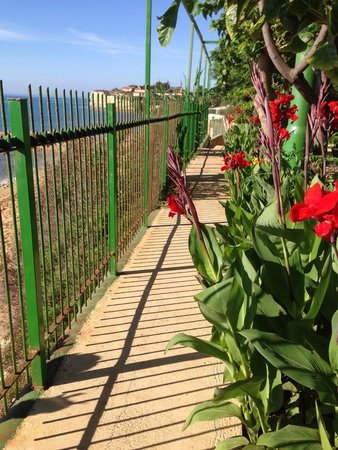 Campeggio Sabbiadoro: Piacevole soggiorno in riva al mare tra i fiori