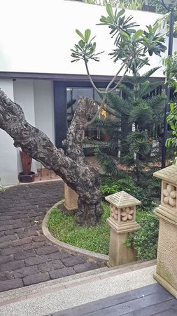 Tara Angkor Hotel: Hotel grounds