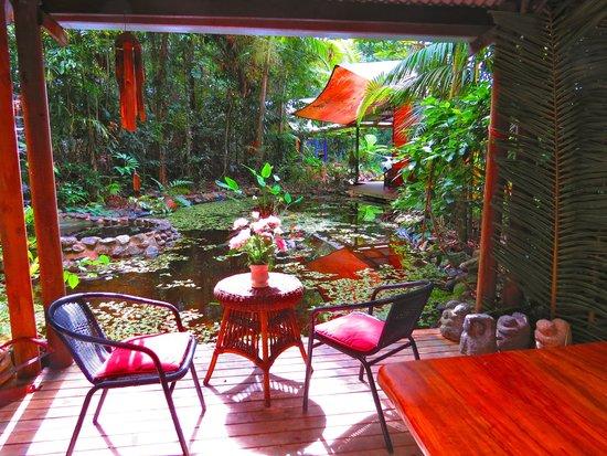 Rainforest Hideaway : paradise