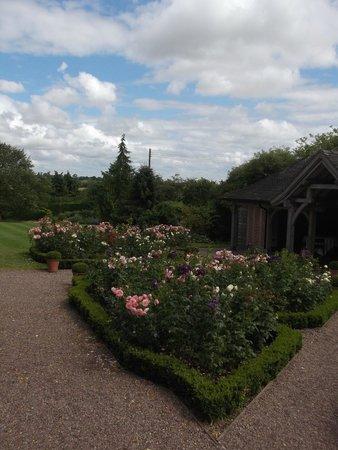 Goldstone Hall Hotel: Rose Garden