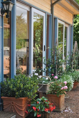 Kurrara Historic Guest House: Our potted garden